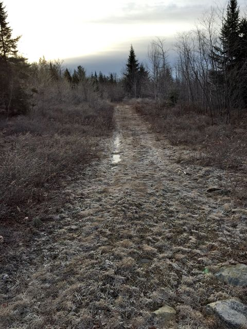 frosty trail looking east
